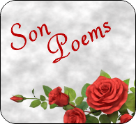 the most sincere and heartwarming poems for your son